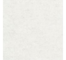 ATESSA A49501 10,05*1,06 обои виниловые GRANDECO