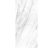 ELEGANCE WHITE POLISHED BOOKMATCH BLOCK B 119,3*260 керамогранит APAVISA
