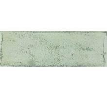 Arles Forest 10*30 плитка настенная FABRESA