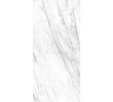 ELEGANCE WHITE POLISHED BOOKMATCH BLOCK A 119,3*260 керамогранит APAVISA